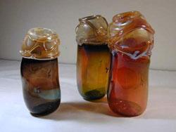 Susan Ward glass artist